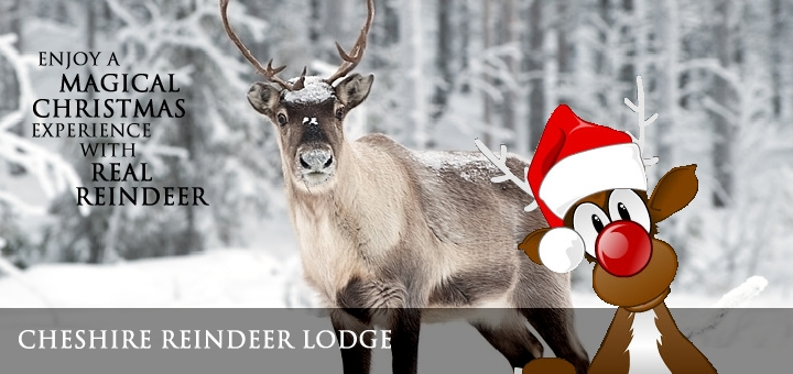 Reindeer Lodge, Cheshire Oaks, Chester.