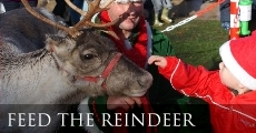 Feed the reindeer included